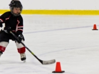 Long Term Hockey Player Development Model and It's Importance